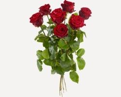 Losse Rode Roos